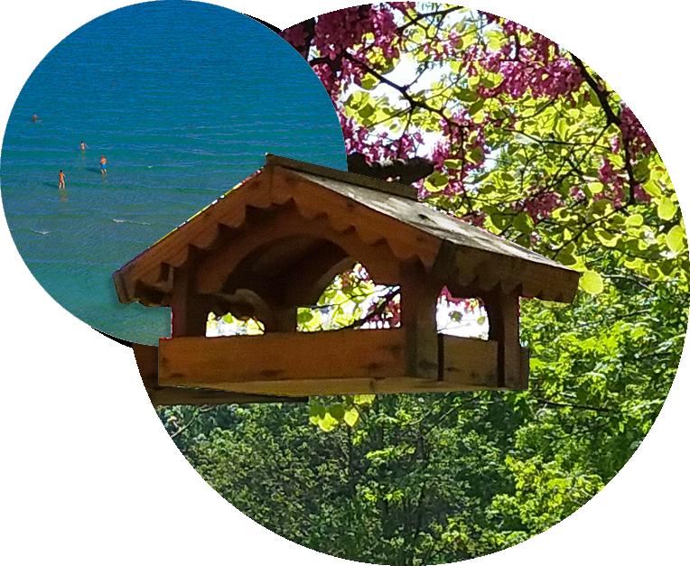 Villa Borromeo _ Ospitalità nel verde a due passi dal mare